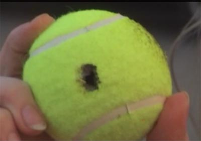 Cynical Smirk Tennis Ball Slim Jim